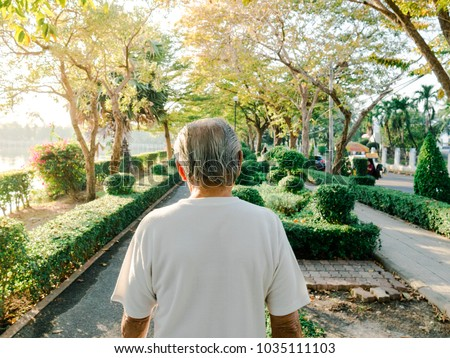 back, behind of old man, grand father abandoned. walking alone in public park at afternoon.