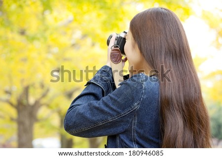Back of a Japanese woman taking a picture of gingko