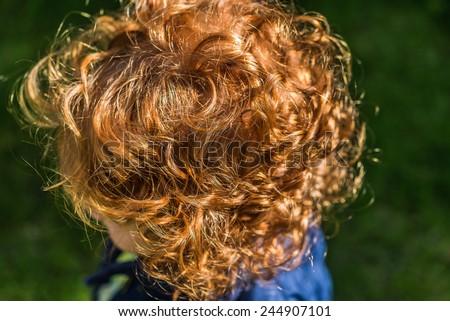 stock-photo-back-of-head-little-girl-with-long-red-curled-hair-little-girl-with-long-red-curled-hair-outside-244907101.jpg