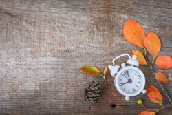 Back to school Alarm clock, leaves and cones, September 1, toned