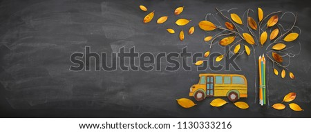 Back to school concept. Top view banner school bus and pencils next to tree sketch with autumn dry leaves over classroom blackboard background #1130333216