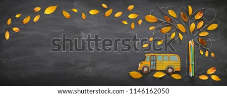 Back to school concept. Top view banner school bus and pencils next to tree sketch with autumn dry leaves over classroom blackboard background #1146162050