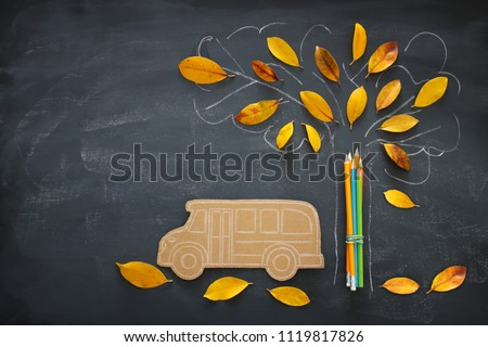 Back to school concept. Top view image of school bus and pencils next to tree sketch with autumn dry leaves over classroom blackboard background #1119817826