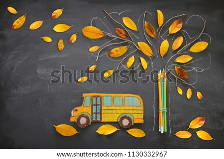 Back to school concept. Top view image school bus and pencils next to tree sketch with autumn dry leaves over classroom blackboard background #1130332967