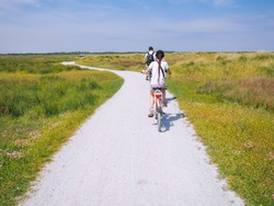 Back view cyclists family traveling on the road in the dune area of Schiermonnikoog island. Active family sport. Summer travel and vacation concept