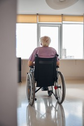 Back view of a male pensioner with short gray hair sitting alone in the room