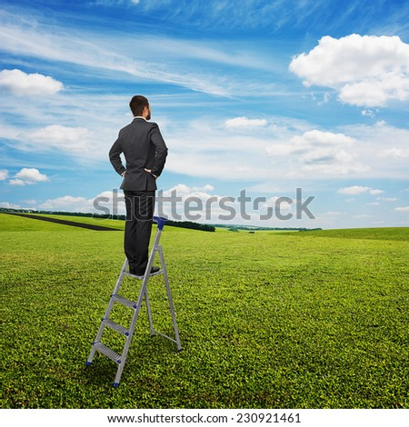 back view of businessman standing on the pair of steps and looking forward. photo over green grass and blue sky