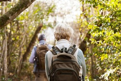back view of couple hiking together in forest