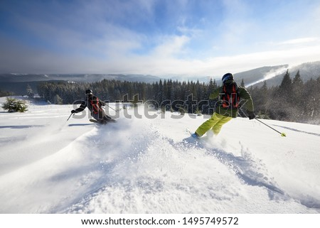 Back view of proficient male skiers in snow powder. Backcountry skiing. Using carving technique on wide open wooded hillside. Panoramic view of picturesque winter mountains and forest under blue sky. #1495749572