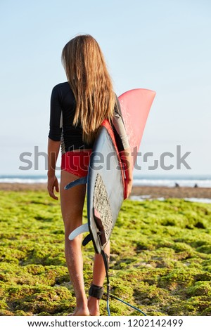 Back view of slim sporty woman with sweet buttocks, carries surfboard in hands, has long hair, longboard leash fastened on leg, goes into direction to ocean, has spare time for hobby during vacation