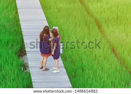 Back view of two female friends walk and take photography along the bamboo path that crossed through the fields in the evening before the sun set down on the horizon. #1488656882