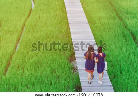 Back view of two female friends walk and take photography along the bamboo path that crossed through the fields in the evening before the sun set down on the horizon. #1501610078