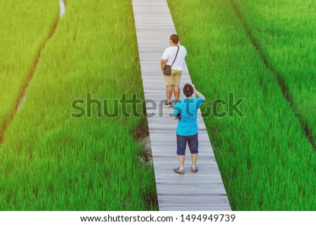 Back view of two male friends walk and take photography along the bamboo path that crossed through the fields in the evening before the sun set down on the horizon. #1494949739