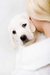 Back view of woman in white sweater embracing White puppy