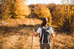 Back view of woman with backpack and trekking sticks. Nordic walking. and hiking. Autumn nature around and path forward. Travel concept.