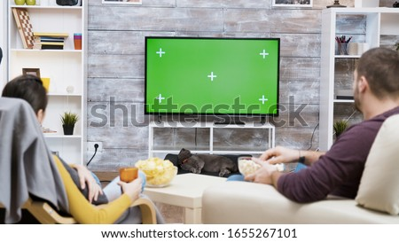 Back view of young couple sitting on chair eating popcorn , watching tv with green screen and their cat licking her fur.