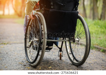 Back view of young woman in  wheelchair during walk in park  in sunny day
