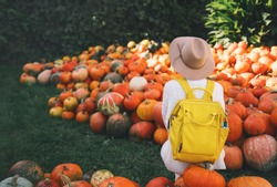 Back view on woman with backpack is picking pumpkins at pumpkin patch at farm market. Thanksgiving holiday season and Halloween. Autumn background with person