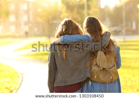 Back view portrait of two affectionate friends walking at sunset in a park