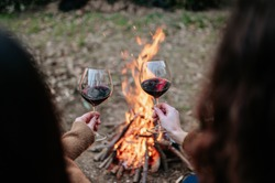 Back view two young women holding and tasting a glass of red wine. Warming next to fire.