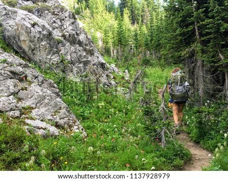 Backcountry hiking the spectacular Northover Ridge trail in Kananaskis, Alberta, Canada
