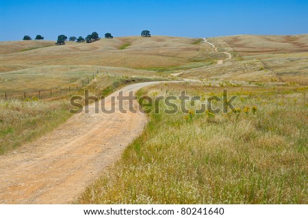 Backcountry Road:  A narrow gravel road winds through the grassy foothills of the Sierra Nevada Mountains in California.