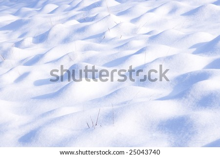 Backdrop of snowdrift with blue shadows on it and dry stems of grass
