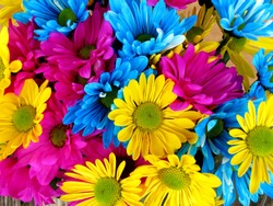 Background abstract flower colorfull very beautifull