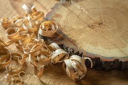 Background blank, oak wood with shavings, oak end saw, end grain, woodwork