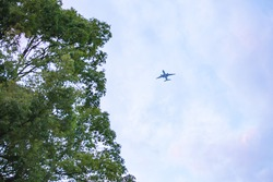 Background blur The black silhouette   of the plane in high angle is a distant image with dim light. in the evening time near dusk, light, blue background and beautiful dry trees. Vintage cool colors.