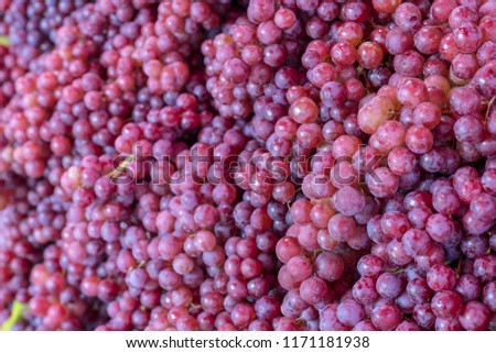 Background Close-up of purple grapes stacked together, commonly seen in the Thai market during the rainy season.