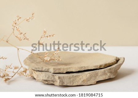 Background for cosmetic products of natural beige color. Stone podium and dry flower on a white background. Front view. stock photo