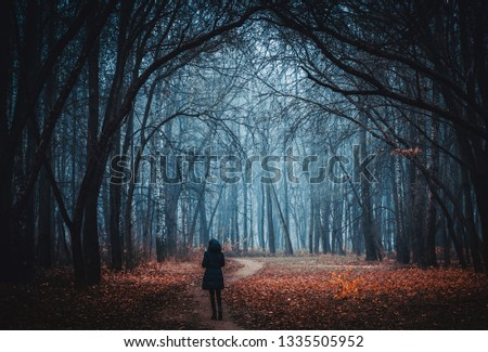 Background for wallpaper. Girl stands on the road in the night forest. Mystical Strange forest in a fog. Background mystic atmosphere. Dark mysterious park