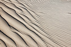 Background from a sand dune