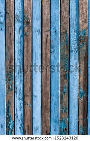 Background from old shabby blue narrow boards with two rows of nails. On many boards there is no paint, a lot of knots, arranged vertically. Vertical frame.