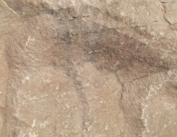 Background,highly detailed texture of granite rock surface