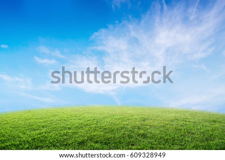 Background image of lush grass field under blue sky and bright. #609328949