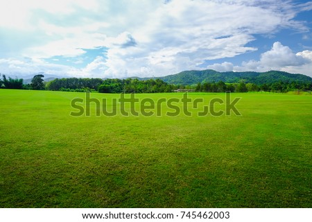 Background image of lush grass field with blue sky at Singha Park, Chiangrai, Thailand #745462003