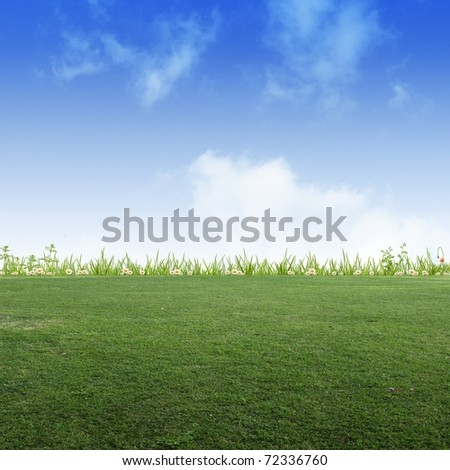 Background image of meadow