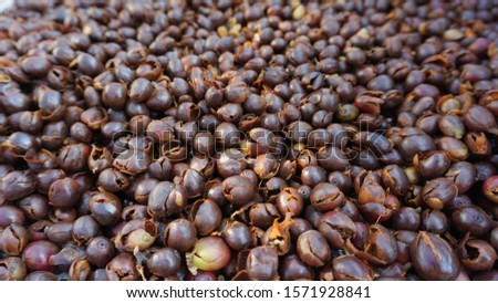 Background image of raw coffee bean shell.