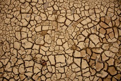 Background images of dry topsoil during the dry season