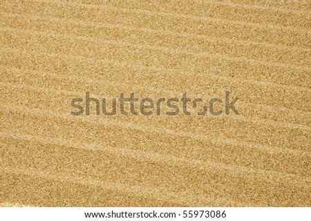 background made of a closeup of sand of a beach