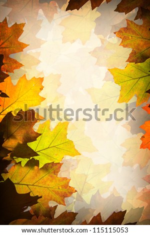 Background made of autumn brown and orange leaves