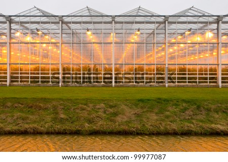 background of a commercial greenhouse #99977087