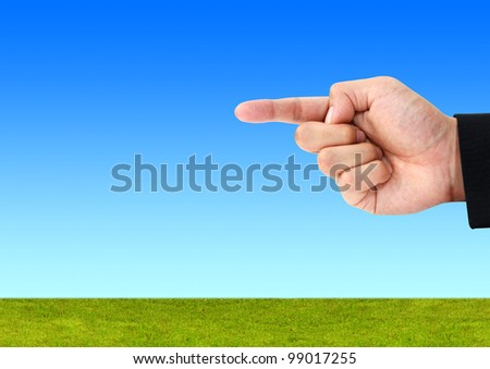 background of a green grass with blue sky