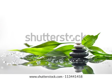 background of a spa with stones, and a sprig of green bamboo ストックフォト ©