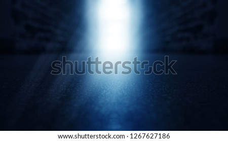 Background of an empty corridor with brick walls and concrete floor. Spotlight, smoke, neon light #1267627186