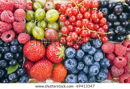Background of assorted fresh berries mixed collection  surface close up macro shot