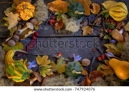 Background of autumn leaves, hips, lavender, pumpkins, forest mushrooms and crocuses.  frame with place to be inscribed or text. Mockup for seasonal offers and a holiday card. #747924076