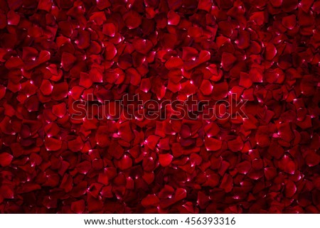Stock Photo Background of beautiful red rose petals